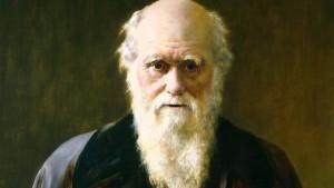 darwin-Brand-talks