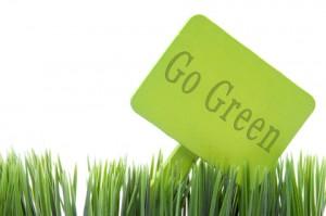 Doğa öyle cömert ki? Ona yatırım yapmak için tereddüt etmemeli! Doğaya yapılan yatırımın karşılığı fazlasıyla alınır.